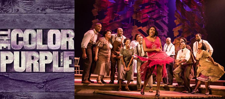 The Color Purple at Shubert Theatre