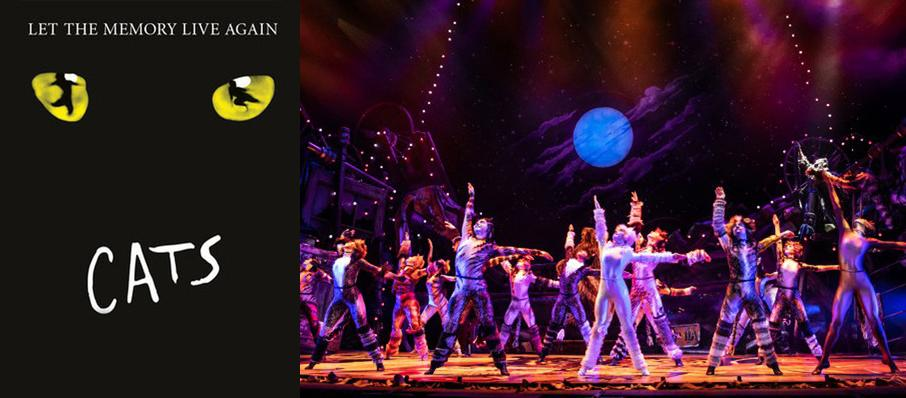 Cats at Citizens Bank Opera House